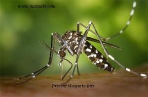 WORLD MALARIA DAY, MALARIA VACCINE & MALARIA PREVENTION