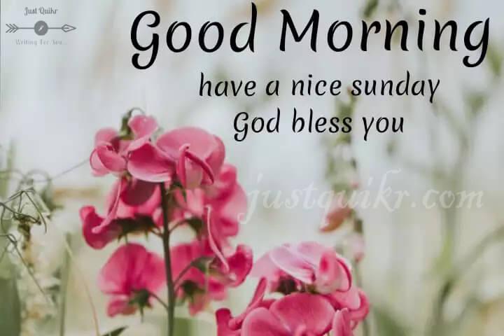 Good Morning happy Sunday pics images Photo Wallpaper
