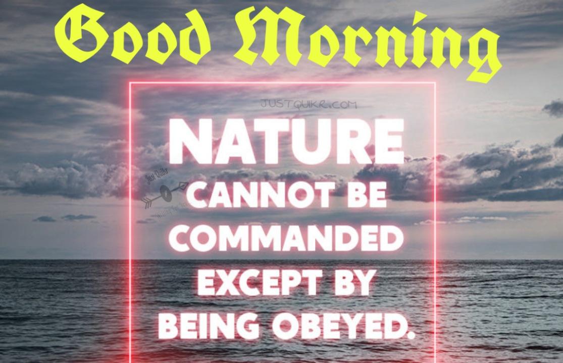 Good Morning Nature Pics Images Photo Wallpaper Download