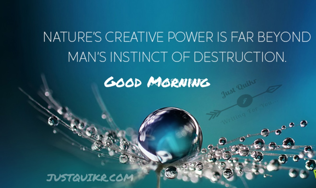 Good Morning NatureMessages Wishes Shayari SMS HD Pics Images Photo Wallpaper for Whatsapp Instagram And Facebook