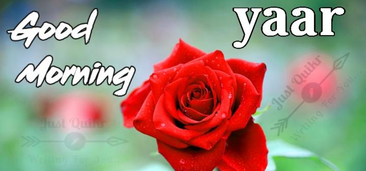 Good Morning Yaar Pics Images Photo Wallpaper Download