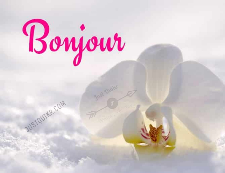 Good Morning French Pics Images Photo Wallpaper