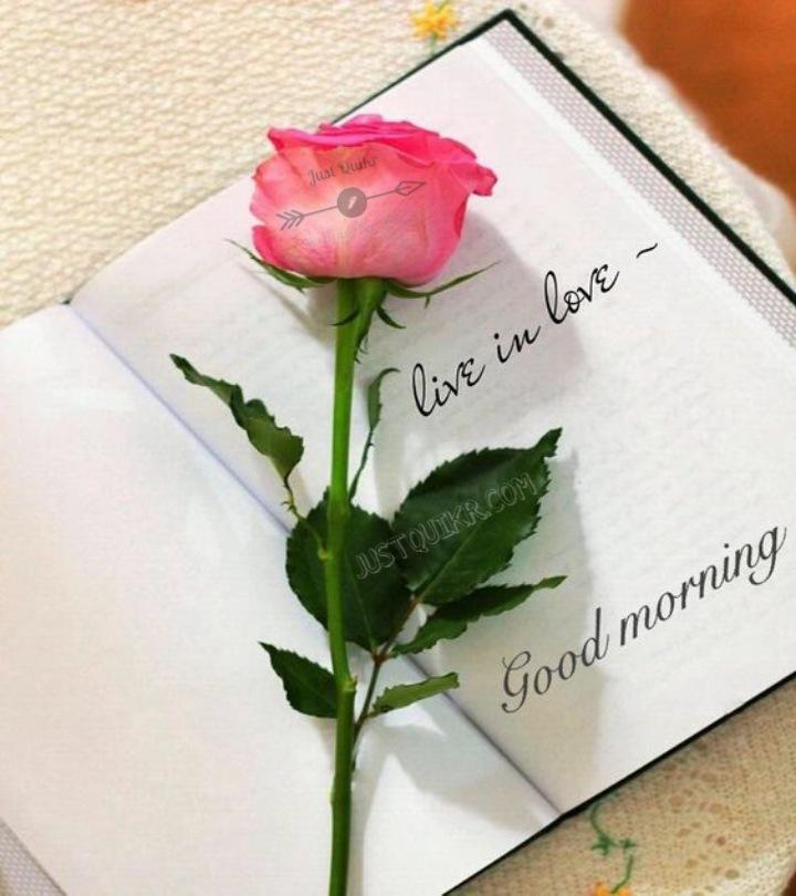 Good Morning Love Pics Images Photo Wallpaper