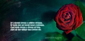 Happy Birthday Shayari Greetings Sayings SMS and Images for Lifeline