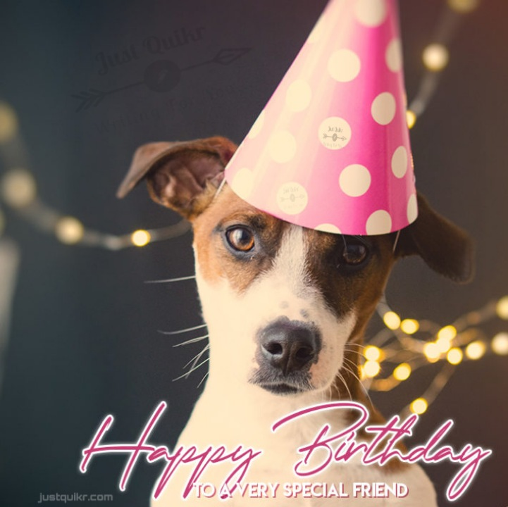 Happy Birthday Funny Wishes Memes and Images for New Friend