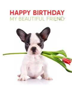CreativeHappy Birthday Wishes Thoughts Quotes Lines Messages in English For Partner
