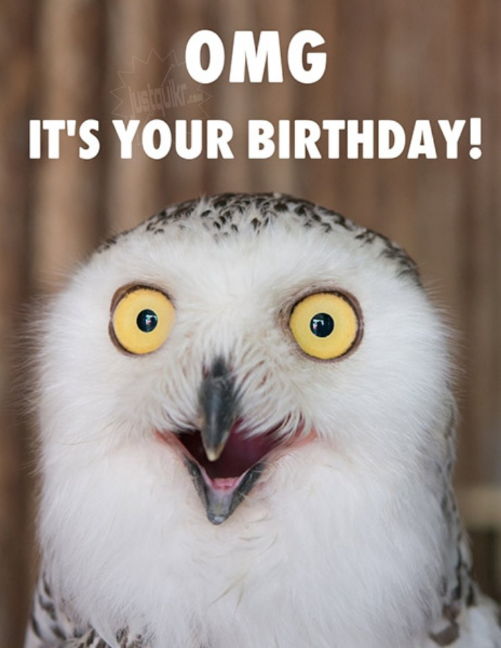 Happy Birthday Funny Wishes Memes and Images for old Sister
