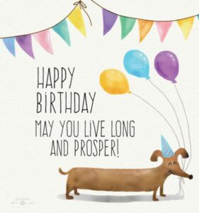 CreativeHappy Birthday Wishes Thoughts Quotes Lines Messages in English For Best friend funny