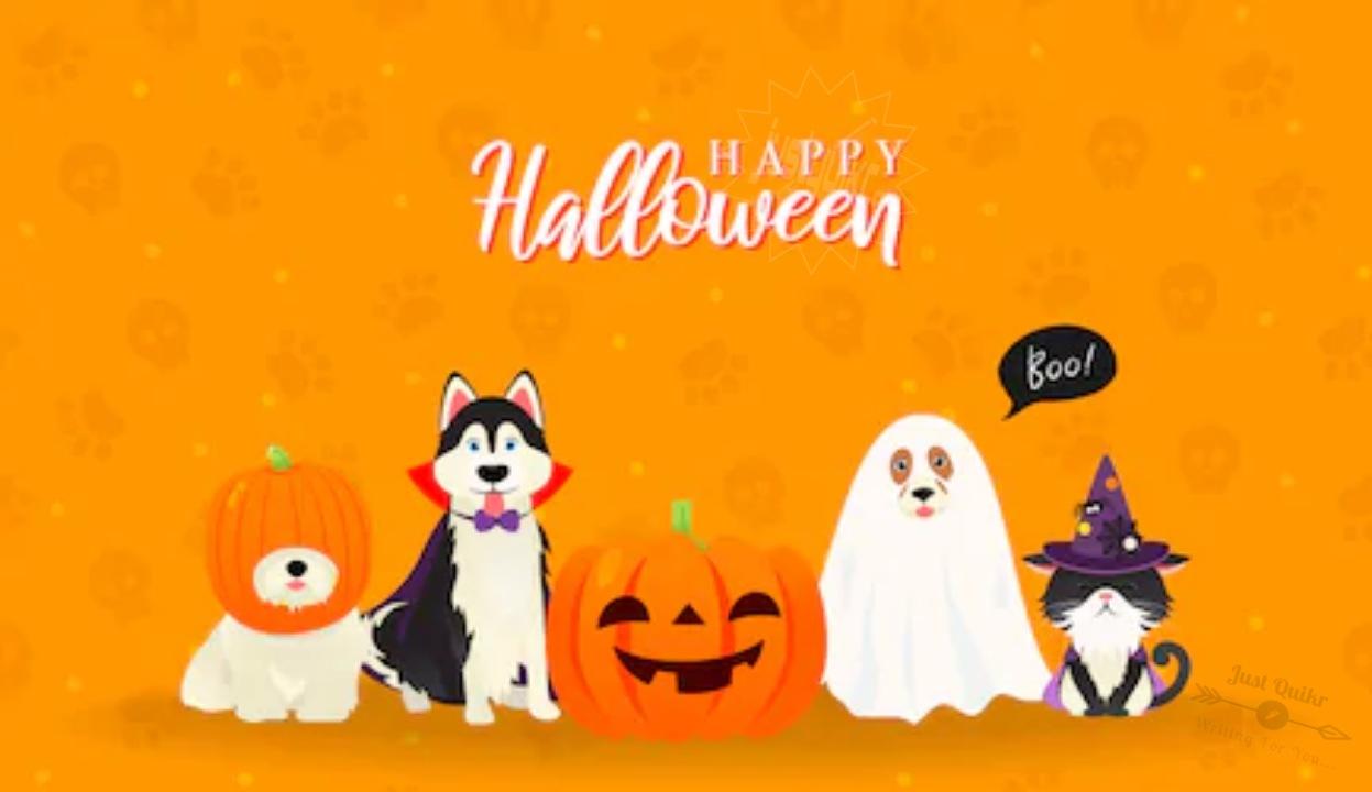 Halloween Day Cartoon Pumpkin HD Images Pics Pictures