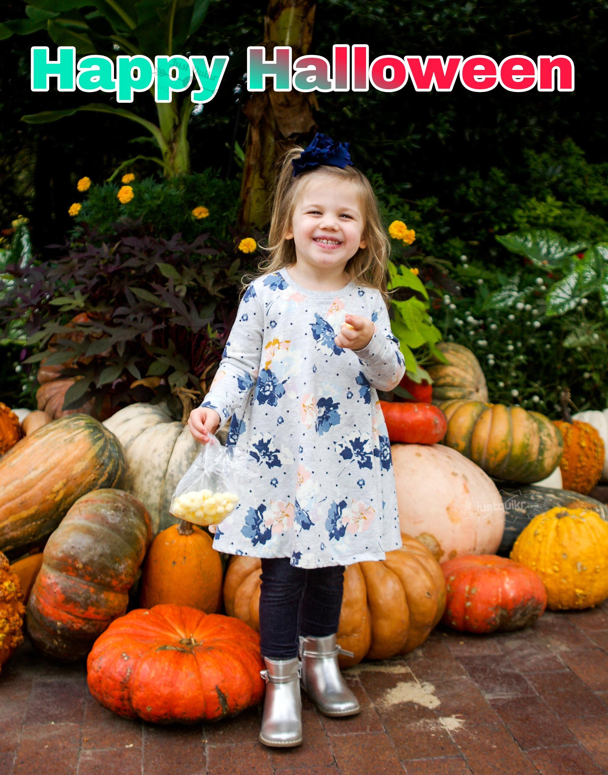Halloween day Activities for kindergarten and Preschool