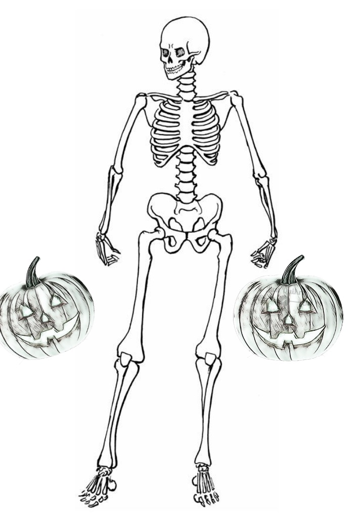 Halloween Day Coloring Pages Drawings for Skeleton