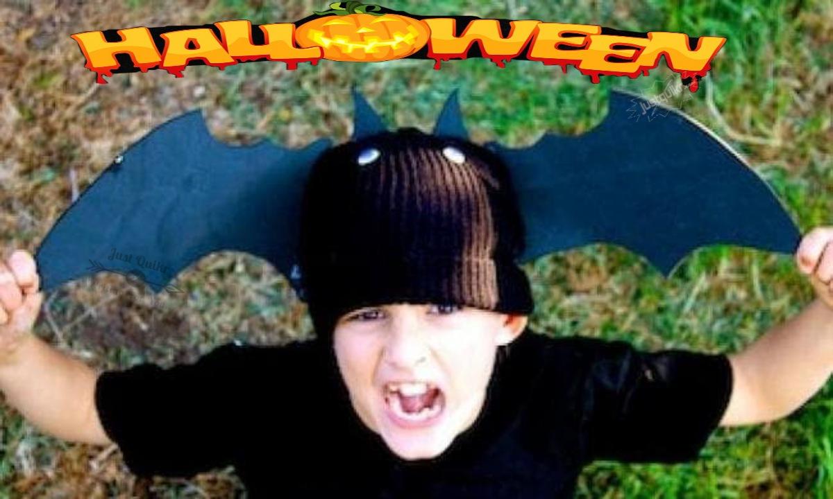 Halloween Day Dress Ideas for Juniors