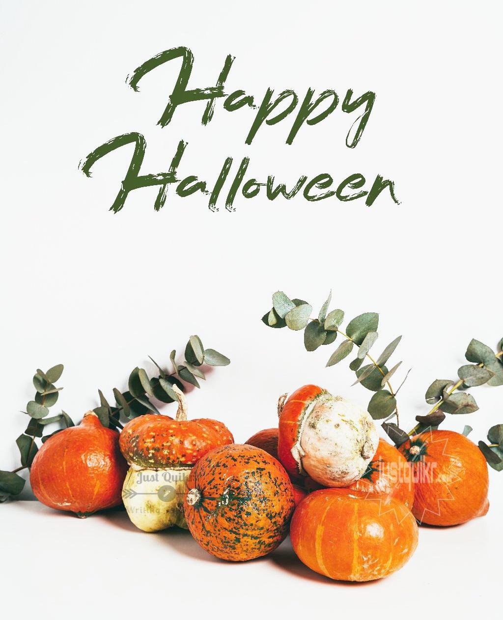 Halloween Day Essay in English