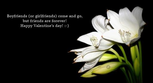 Valentine Day Flower Friendship Quotes