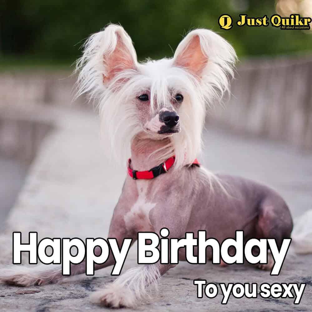 Happy Birthday Meme - 12