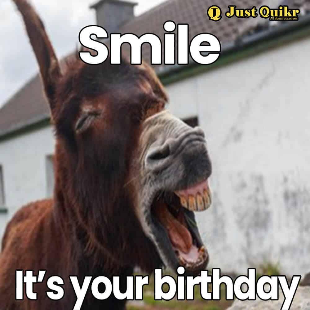 Happy Birthday Meme - 18