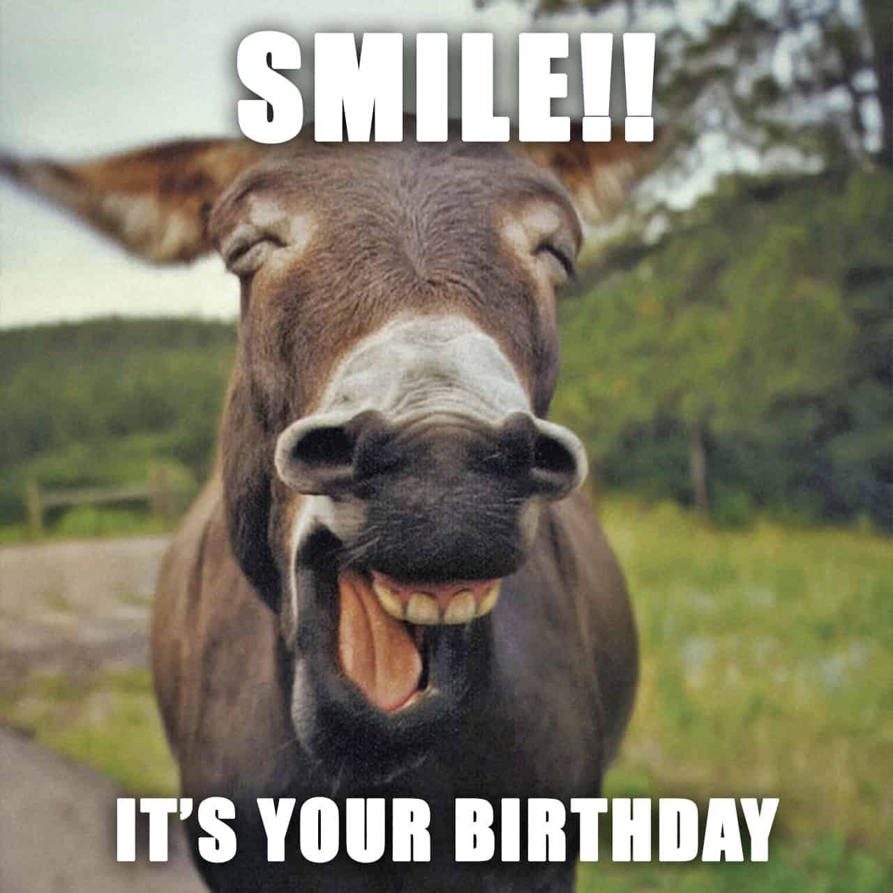 Happy Birthday Meme - 46